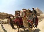 Camel Ride!?!
