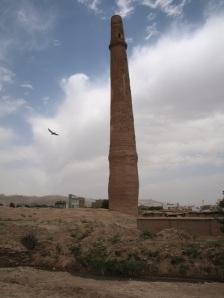 herati-minaret