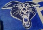 60s Era Wildcat