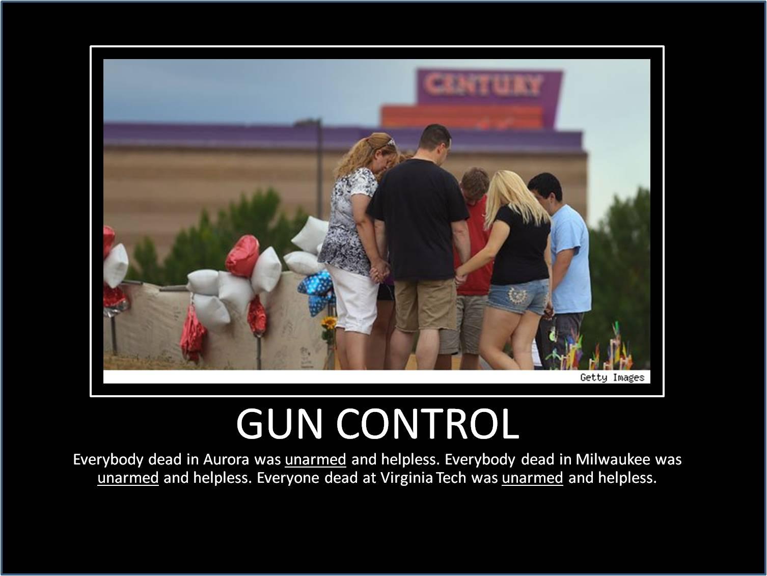 Gun Control Quotes Gun Control  Silk Roads And Siamese Smiles