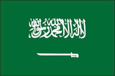Saudi_Arabia_svg2