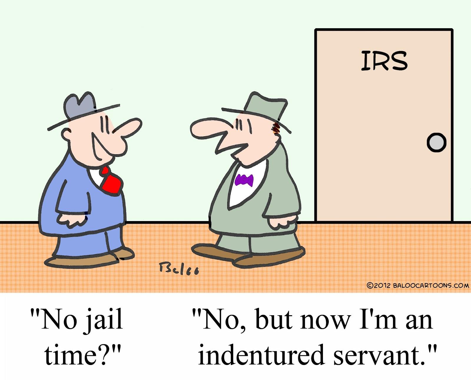 Baloo-the-IRS