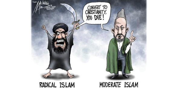 moderatevsradicalmuslim_5821da_53264681